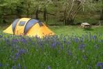 640px-Dinas_camping_-_geograph.org.uk_-_1731943